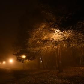 Mlhavá procházka