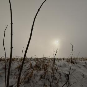 slunce z Chladné