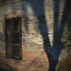 Krajina ticha a stínů II.
