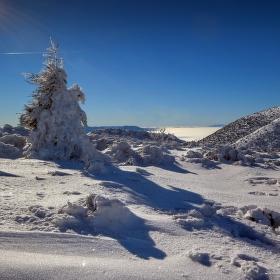 V záľahe snehu