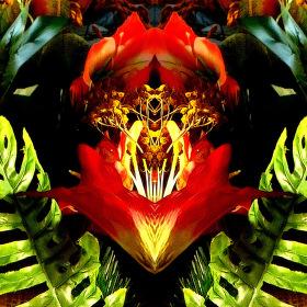květinová vitráž...