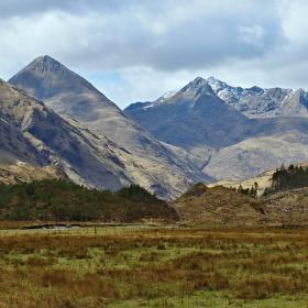 Skotska jar 2