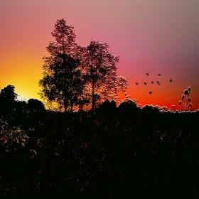 Svítání u jezera