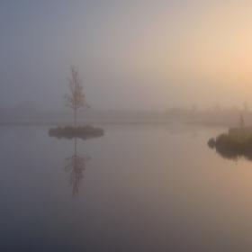 V mlhavém závoji