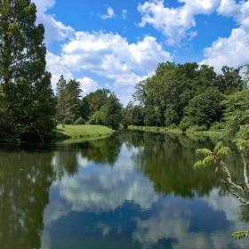 Rameno řeky Dyje