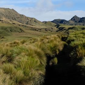 Nacional park Sangay vysokohorské Paramo