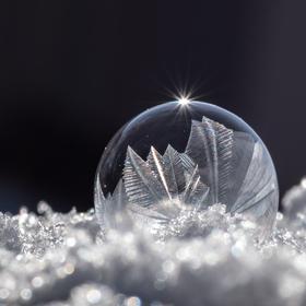 Živá bublina