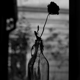 Mezi okny