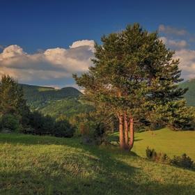 V Strážovských vrchoch