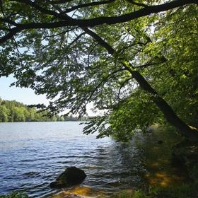 Jevanský rybník