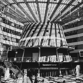 Universita v Haagu