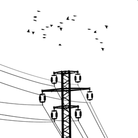 čierne na bielom: elektrická križovatka II