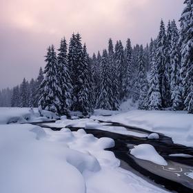 Zimní Šumavou