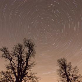 Hvězdný pohyb