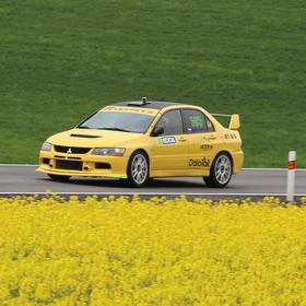Žlutá k žluté