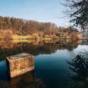 Ráno u Věžického rybníka