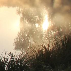 Slunce - voda - mlha