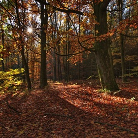 Barevný podzim na Kladsku