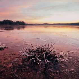 Zimní východ slunce, rybník Branžež