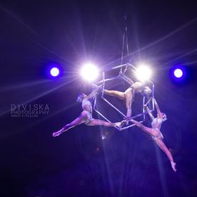Cirkusové umění