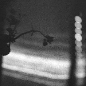 Stinná květina