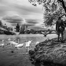 U Vltavy v městě pražském za nouzového stavu