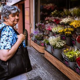 V ulicích Prahy 7