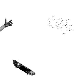 čierne na bielom: úlet