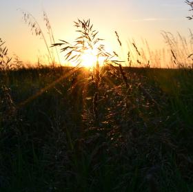 Západ slunce při cestě domů