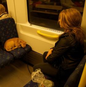 V metru pohodlně