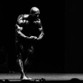 Amateur MR. Olympia 2014