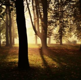 ráno v KOmenského sadech v Ostravě