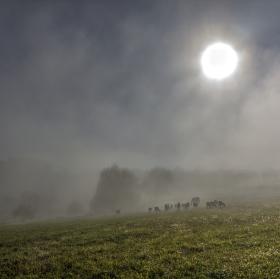 Mlha odchází
