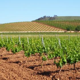 Putování krajinou La Rioja pokračuje