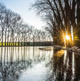 Ráno u rybníčku
