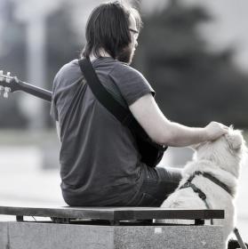 Chlupatý přítel hudebníka