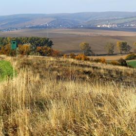 podzimní krajina u obce Věteřov