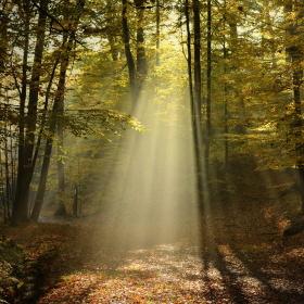 Světlo z nebes