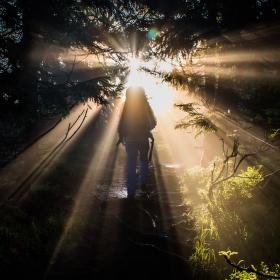 ranní prusvit v mlze při výšlapu na smrk