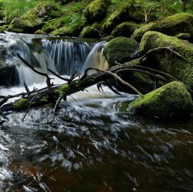 Hamerský potok cestou z Horské Kvildy
