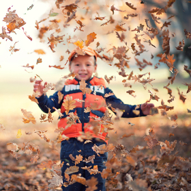 Déšť listí
