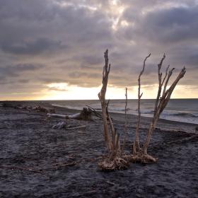Pláž před západem slunce