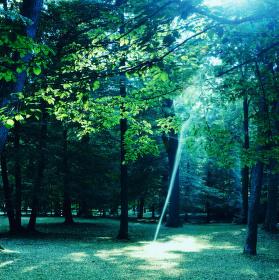 Proud světla