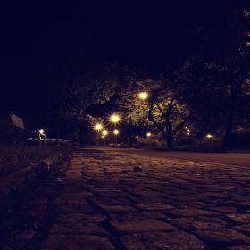 noční procházka parkem