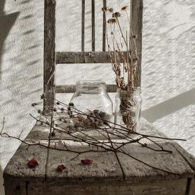 Stará židle, suché větvičky