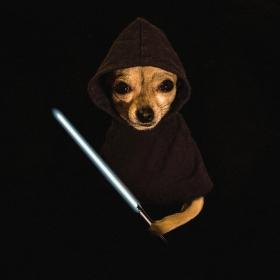 Jedi Knight II.