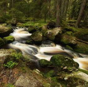 Peřejky Hamerského potoka