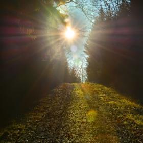 zlatá cesta