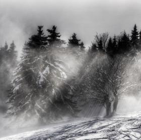 Mlha v údolí Velké Úpy II