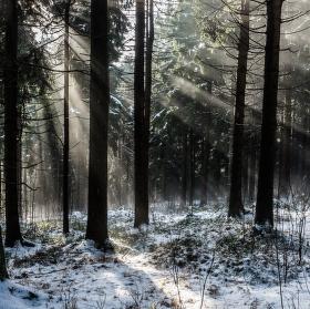 Kouzelné světlo